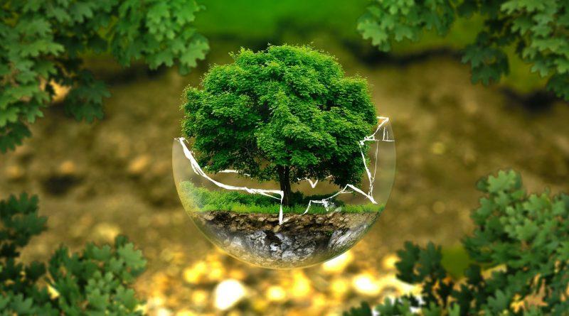 Dzień Ziemi przyroda obrazek